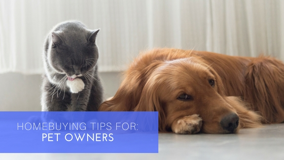 SHH - Home Buying Tips for Pet Owners